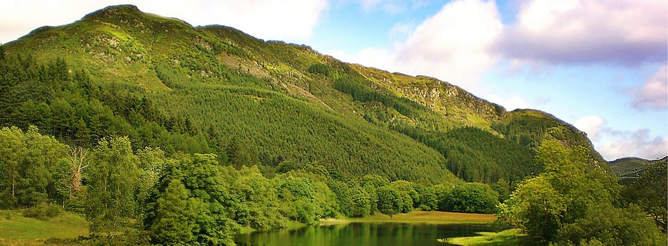 Green marketing and its effect on consumer and corporation behaviour in Scottish tourism
